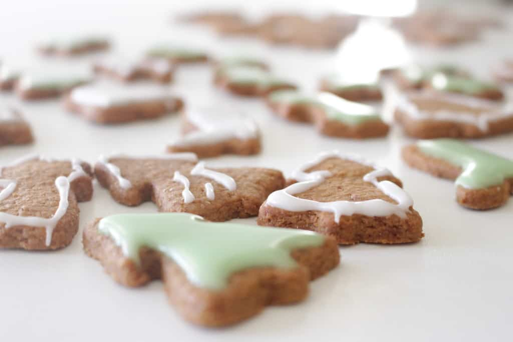 Gingerbread Cookies טבעוניות ומהזן שטוב לנו