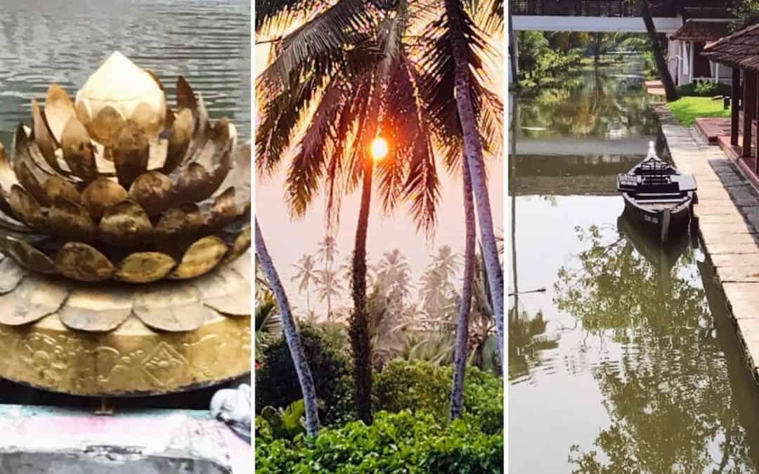 מסע נשים לדרום הודו בסימן אמנות, אוכל ובישול אותנטי מן הצומח והיכרות עם תורת הריפוי והמרפא 5-18/2/2019